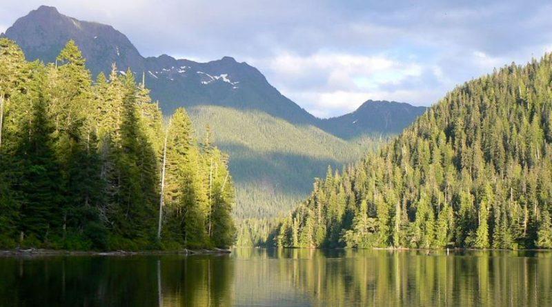 Vancouver island: découverte