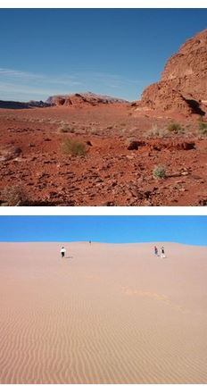 raid buggy désert