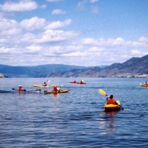 activite paddle dans le 66