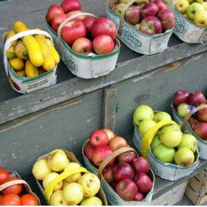vente fruits légumes de saison perpignan