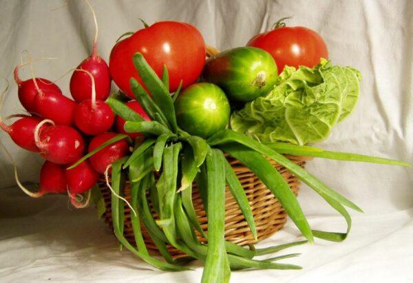 vente légumes ferme perpignan